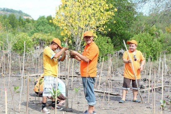 Mangrove planting event by Amari Phuket