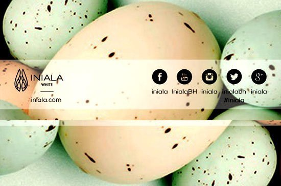 Enjoy a family Easter Sunday Lunch 5th of April at Iniala White