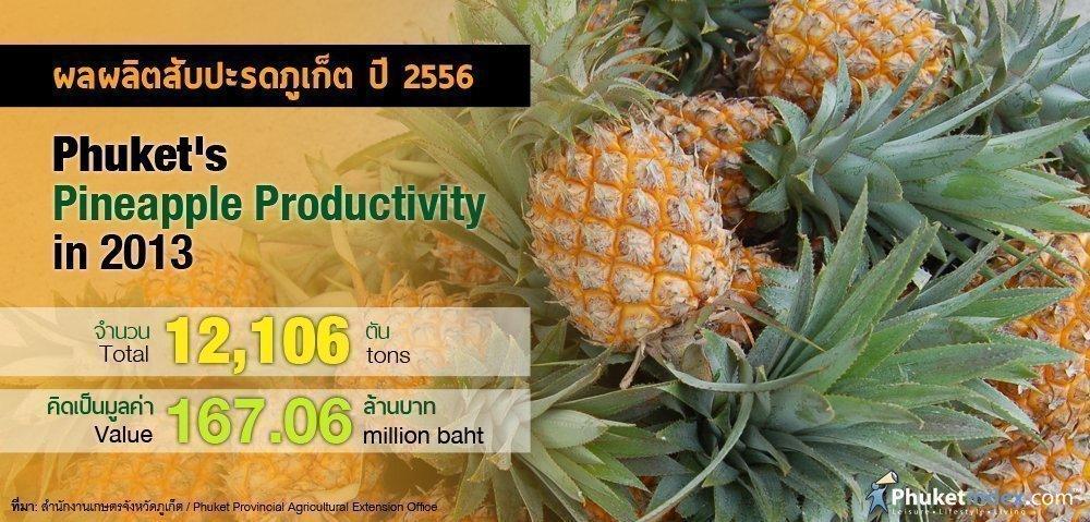 Phuket Stat: Phuket's Pineapple Productivity in 2013