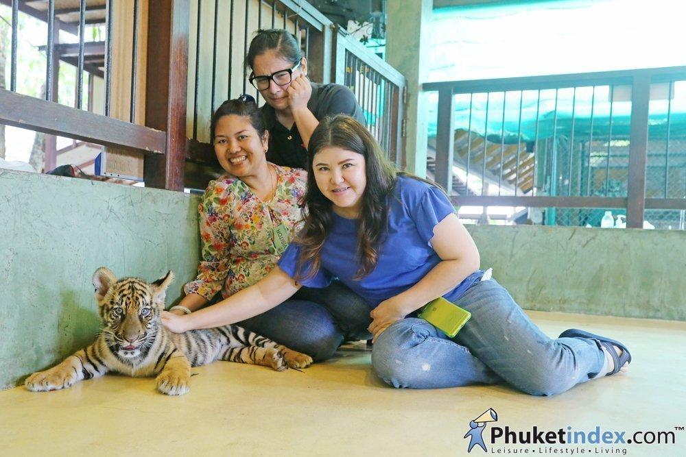Tiger Kingdom, Park and RestaurantPhuket