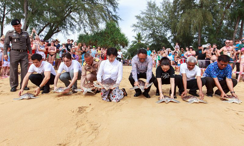 The 8th Mai Khao Marine Turtle Release Ceremony on Songkran Day At JW Marriott Phuket