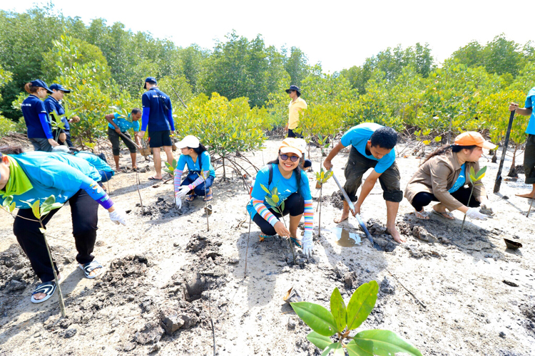 AKSARA Collection planted mangrove trees to support local community environment